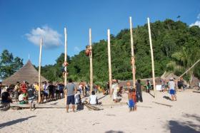 Practice Poles