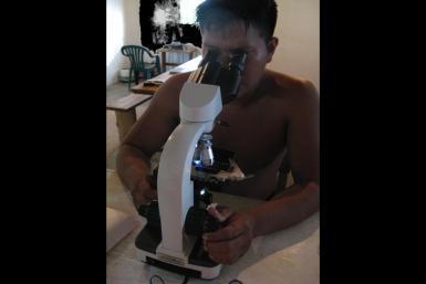 malaria CAICET